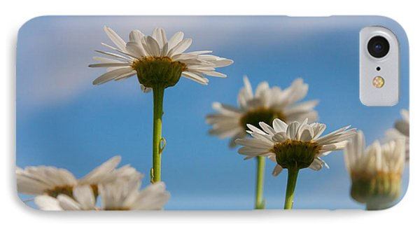 IPhone Case featuring the photograph Coming Up Daisies by Christina Lihani