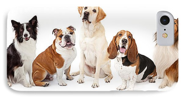 Common Family Dog Breeds Group IPhone Case