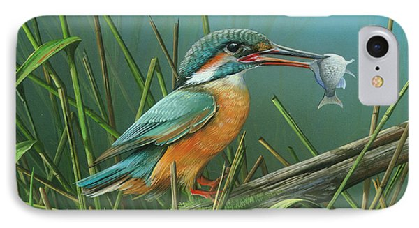 Common Kingfisher IPhone Case by Mike Brown
