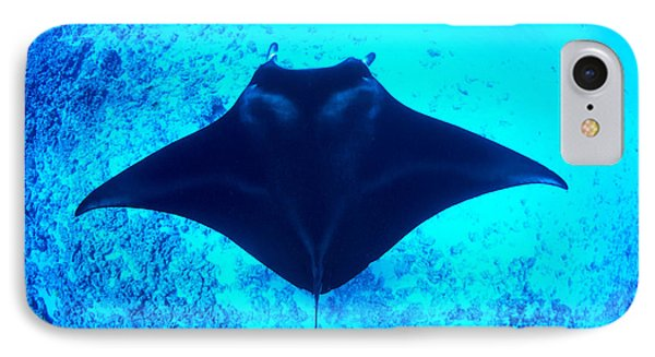 Common Manta Ray Phone Case by Dave Fleetham - Printscapes