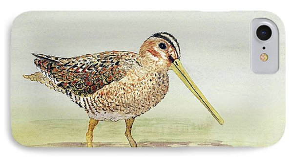IPhone Case featuring the painting Common Snipe Wading by Thom Glace