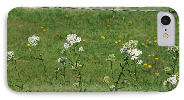 Common Yarrow IPhone Case by Robyn Stacey