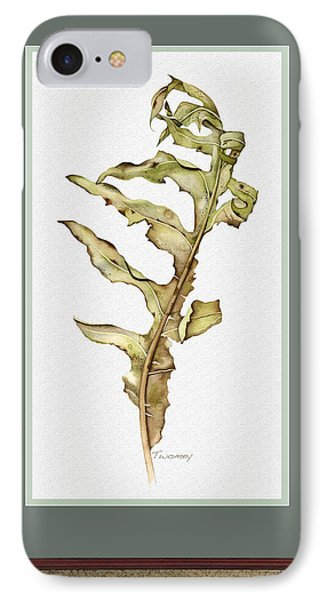 Compass Plant, Fall IPhone Case by Catherine Twomey