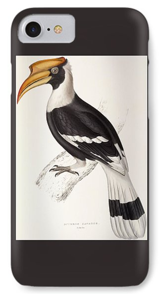 Concave Hornbill IPhone Case
