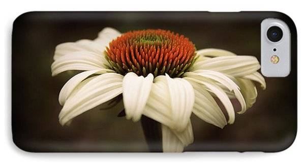 Cone Flower IPhone Case by Jessica Jenney