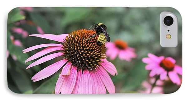 IPhone Case featuring the photograph Cone Flowers And Bee by Sheila Brown