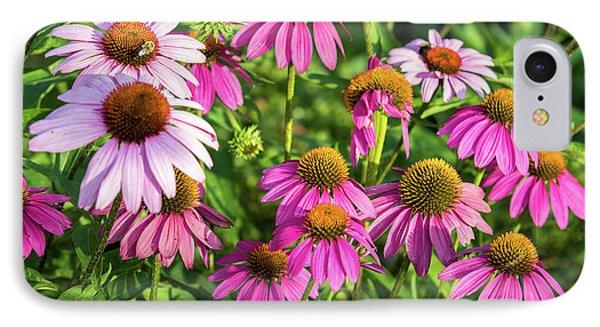 Coneflower Garden IPhone Case by Eleanor Abramson