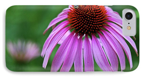 IPhone Case featuring the photograph Coneflower by Judy Vincent
