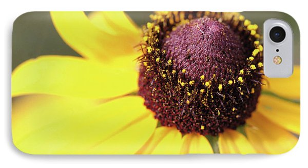 Coneflower Phone Case by Paul Drewry