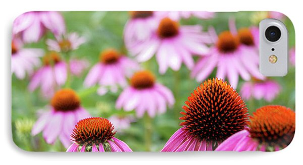 IPhone 7 Case featuring the photograph Coneflowers by David Chandler