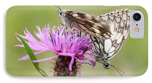 Contact - Butterflies On The Bloom IPhone Case by Michal Boubin