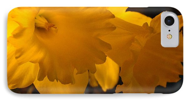 Contemporary Flower Artwork 10 Daffodil Flowers Evening Glow Phone Case by Baslee Troutman