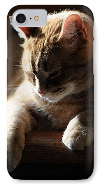 Contentment IPhone Case by Renee Forth-Fukumoto