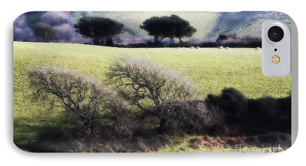 Contrast Of Trees IPhone Case by Gary Bridger
