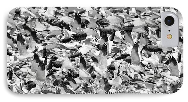 IPhone Case featuring the photograph Controlled Chaos Bw by Everet Regal