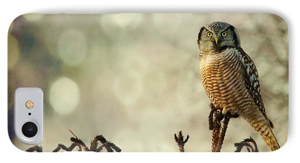 Convenient Perch IPhone Case by Heather King
