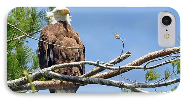 IPhone Case featuring the photograph Cool Breeze by Glenn Gordon