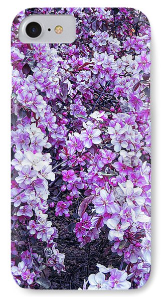 IPhone Case featuring the photograph Cool Sunset Beautiful Blossoms by Aimee L Maher Photography and Art Visit ALMGallerydotcom