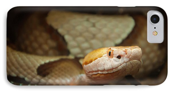IPhone Case featuring the digital art Copperhead by Chris Flees