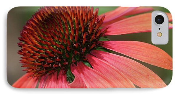 Coral Cone Flower Phone Case by Sabrina L Ryan
