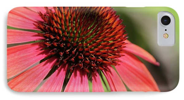 Coral Cone Flower Too Phone Case by Sabrina L Ryan