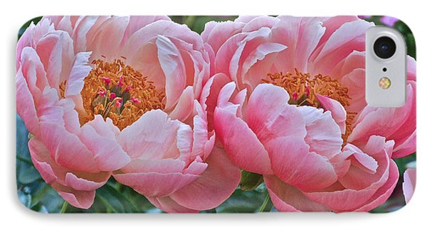 Coral Duo Peonies IPhone Case
