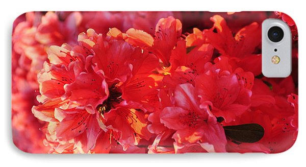 Coral Pink Azaleas Phone Case by Jan Amiss Photography