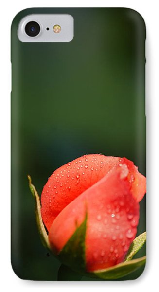 Coral Rose On Green IPhone Case by Debbie Karnes