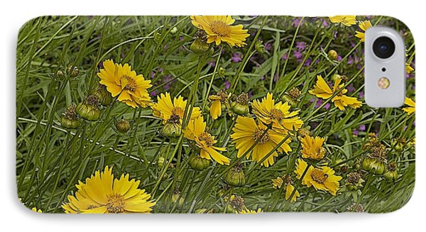 Coreopsis And Mexican Heather IPhone Case by Kerry Beverly