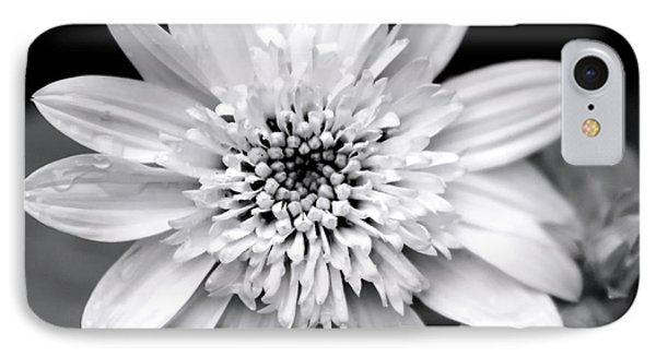 IPhone 7 Case featuring the photograph Coreopsis Flower Black And White by Christina Rollo