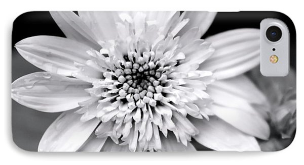 IPhone Case featuring the photograph Coreopsis Flower Black And White by Christina Rollo