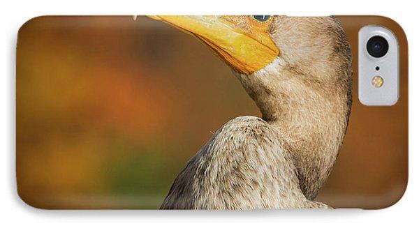 Cormarand On Walden Pond IPhone Case by William Krumpelman
