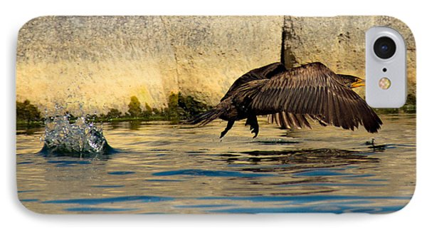 Cormorant In Motion IPhone Case
