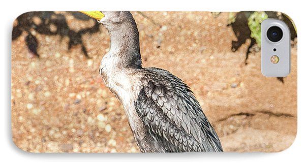 IPhone Case featuring the photograph Cormorant On Shore by Paul Freidlund