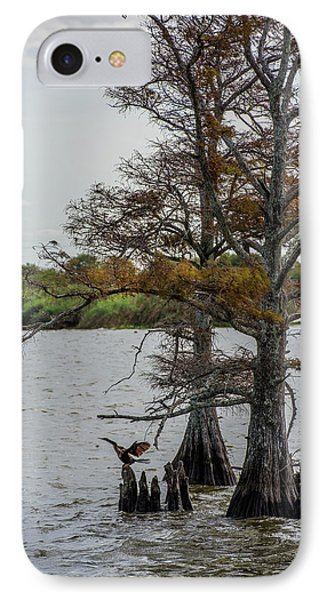 IPhone Case featuring the photograph Cormorant by Paul Freidlund