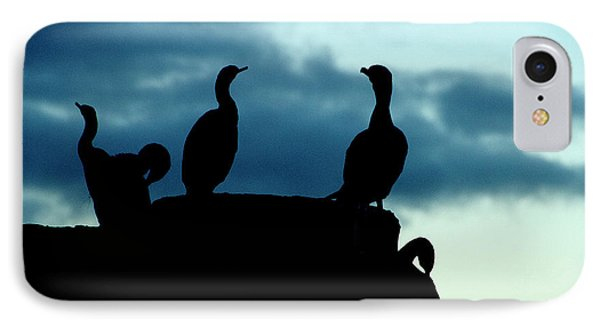 Cormorants In Silhouette IPhone Case by Victoria Harrington