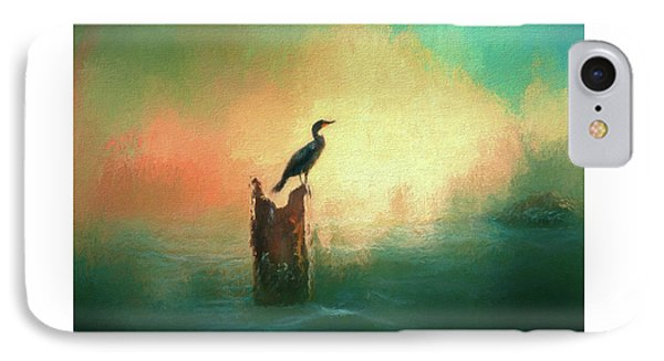 Cormorat Sunset IPhone Case