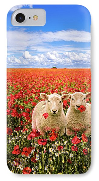 Corn Poppies And Twin Lambs Phone Case by Meirion Matthias