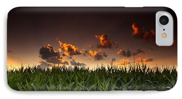 Corn Sunset IPhone Case