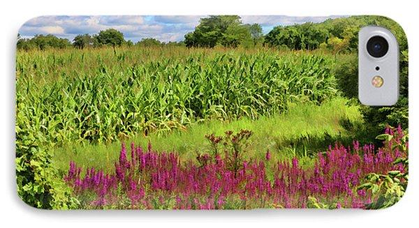Cornfield And Purple Salvia IPhone Case