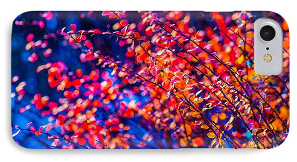IPhone Case featuring the photograph Cotoneaster In Winter by Alexander Senin