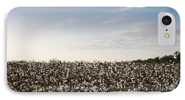 Cotton Field 2 IPhone Case
