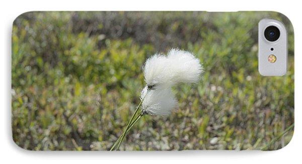 Cotton Grass -eriophorum Virginicum- Phone Case by Erin Paul Donovan