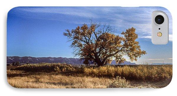 Cottonwood #2 Colorado Ranch Land Montezuma Valley Colorado Mesa Verde IPhone Case by John Brink