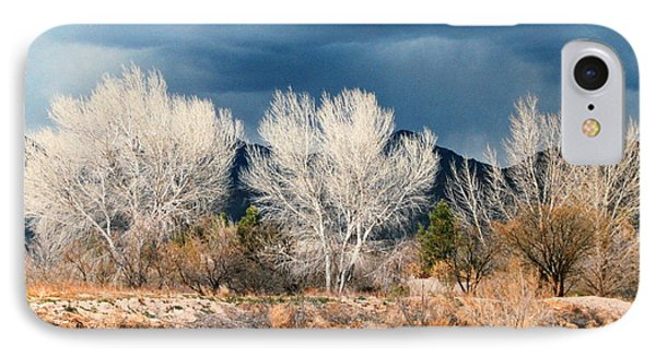 Cottonwoods In Winter IPhone Case by M Diane Bonaparte
