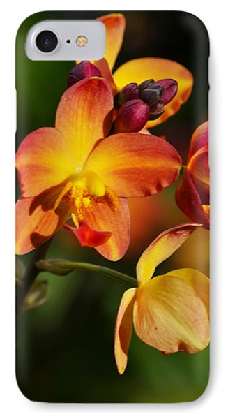 Count Your Blessings Phone Case by Melanie Moraga