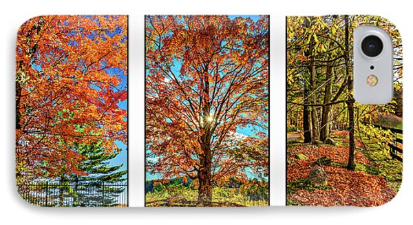 Country Fences Triptych IPhone Case by Steve Harrington