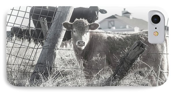 IPhone Case featuring the photograph Country Living For These Cows by Toni Hopper