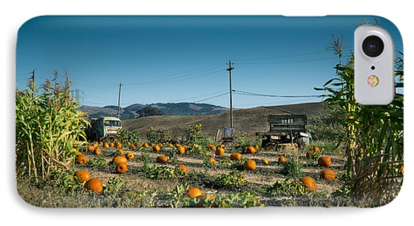 Country Pumpkin Patch IPhone Case by Kim Wilson