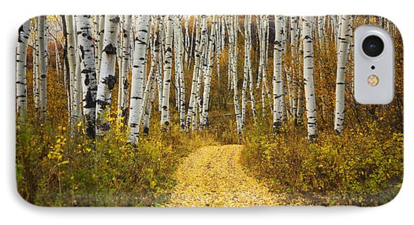 Country Road And Aspens 2 IPhone Case by Ron Dahlquist - Printscapes